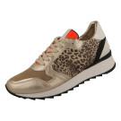 Sneaker Hip Style Beige